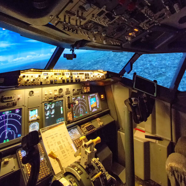 737 800 simulator Pilots view